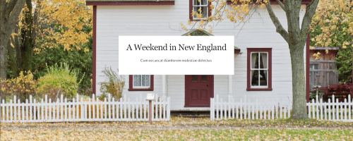 Simply New England